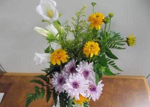 今週のお花(6/4)
