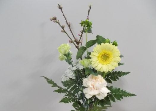 今週のお花(2/25)