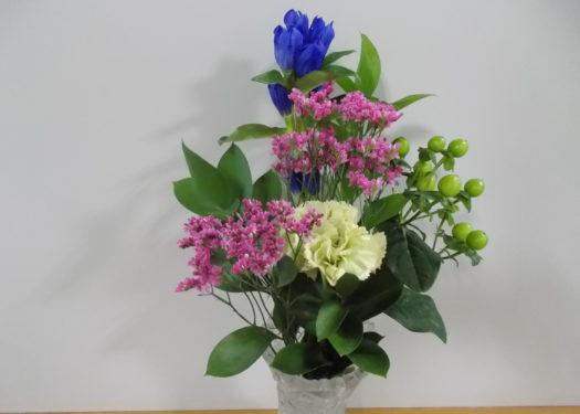 今月のお花(6月)