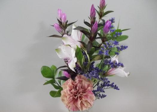 今月のお花(11月②)