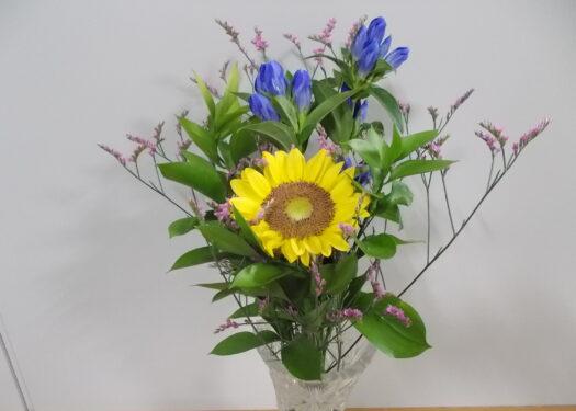 今月のお花(8月)